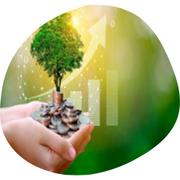 valor económico, social y ambiental